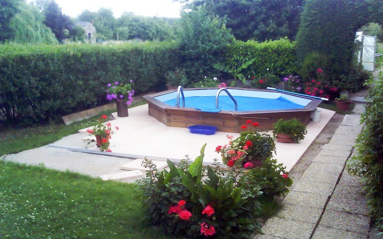 piscine avec des plantes autour